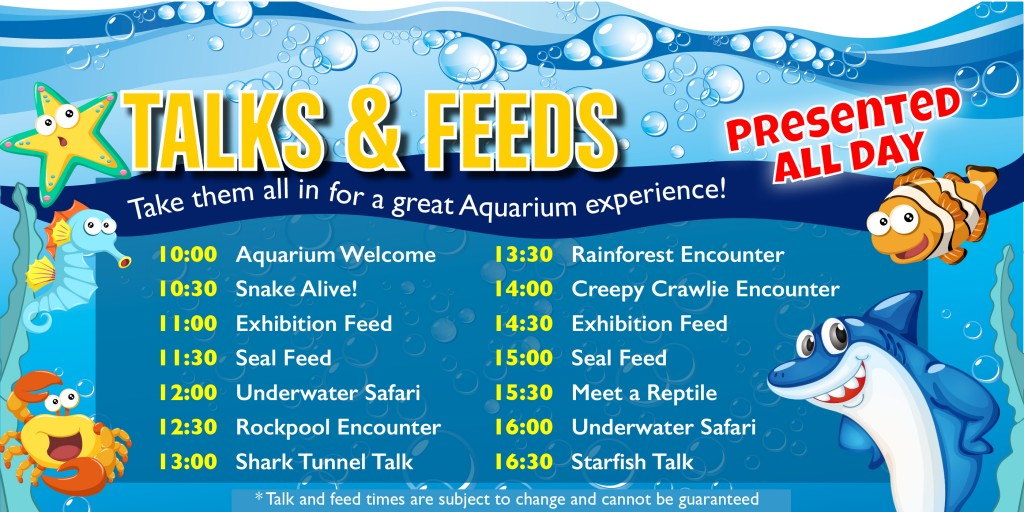 Daily talks and activities at deepseaWorld