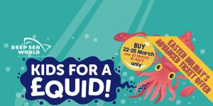Kid for a squid - Catch our savings before they swim away