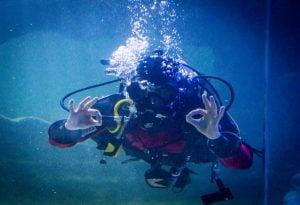Dive & Drive Competition