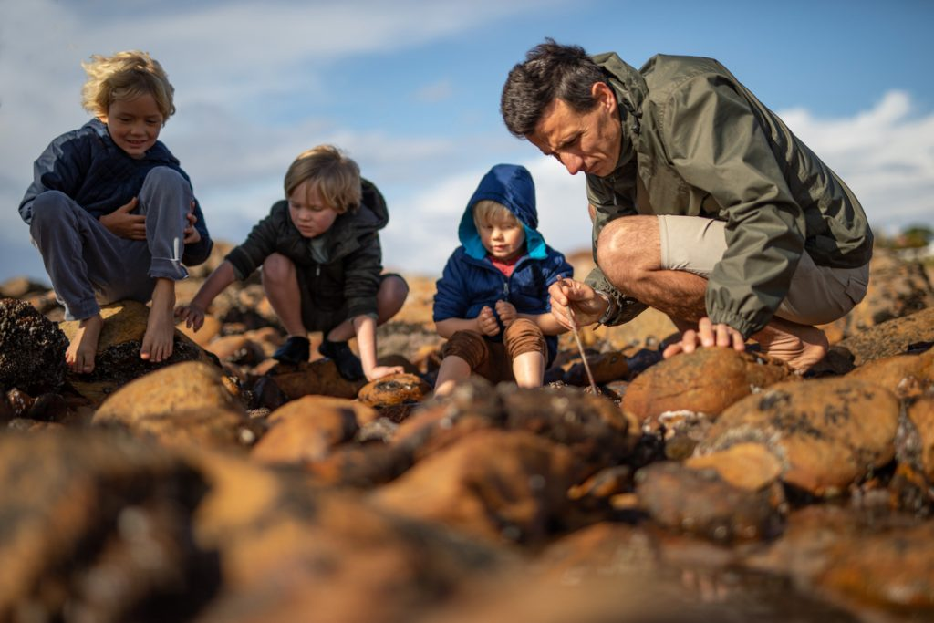 father and sons looking in rockpool